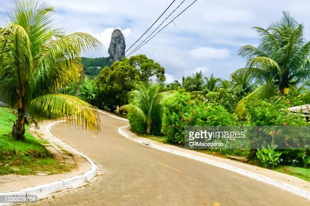 through the streets of fernando de noronha amidst coconut trees and nature, in the background you can see morro do pico. - crmacedonio stock-fotos und bilder