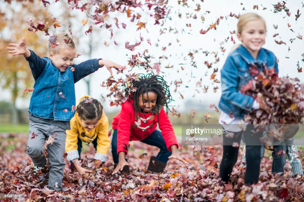 Throwing Leaves : Stock Photo