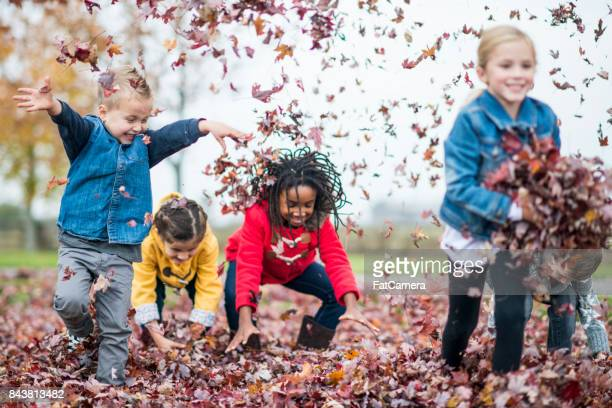 throwing leaves - playing stock pictures, royalty-free photos & images