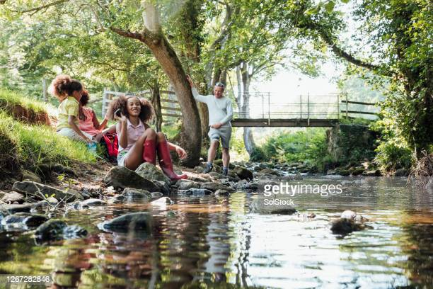 throwing stones into the river - summer stock pictures, royalty-free photos & images