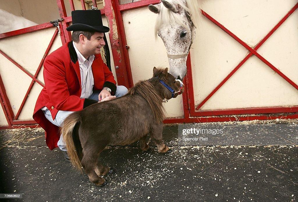 World's Smallest Horse Visits New York City : News Photo