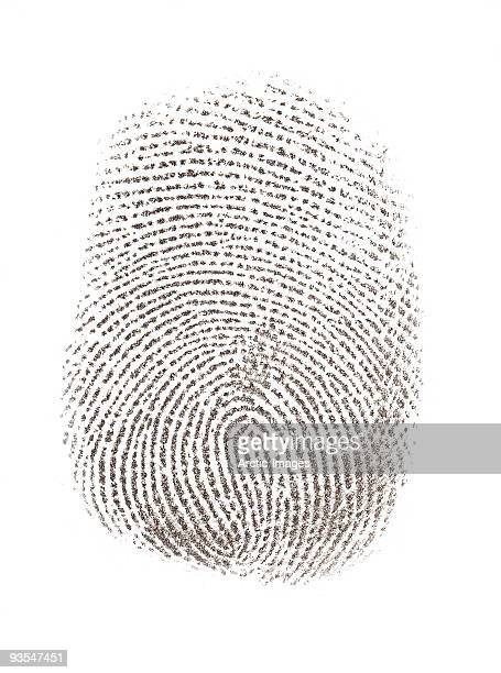 Thumbprint or fingerprint