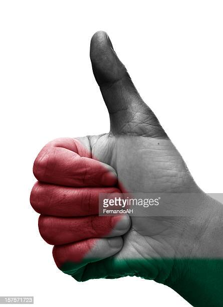 thumbs up palestina - palestinian flag stock pictures, royalty-free photos & images