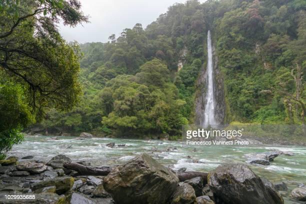 thunder creek falls, new zealand. - ユネスコ ストックフォトと画像