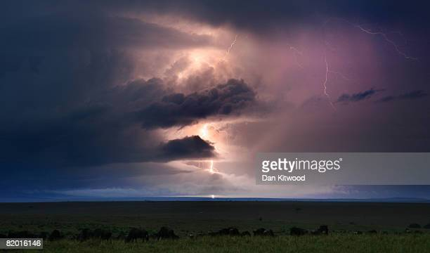 Thunder storm lights up the evening sky on December 13, 2007 in the Masai Mara Game Reserve, Kenya.