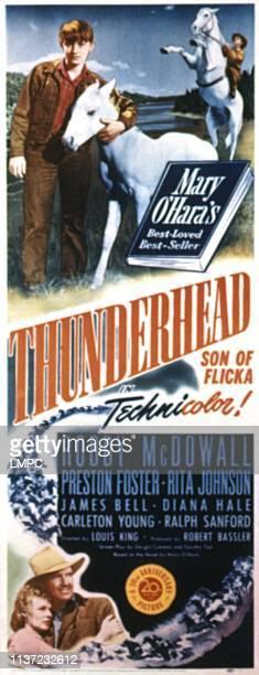 Thunderhead poster SON OF FLICKA Rita Johnson Roddy McDowall Preston Foster 1945