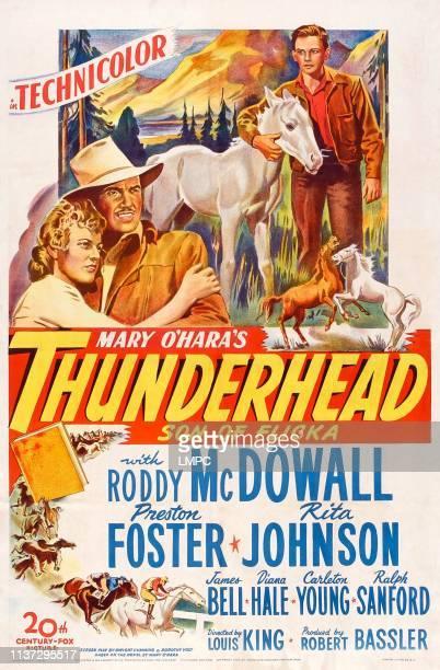 Thunderhead poster SON OF FLICKA US poster art from left Rita Johnson Preston Foster Roddy McDowall 1945