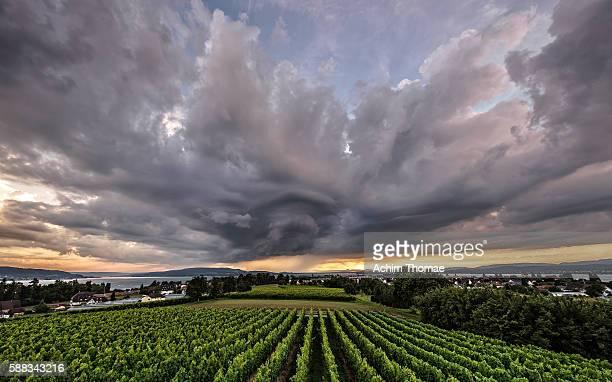 Thunderstorm - Reichenau Island, Lake Constance, Germany, Europe