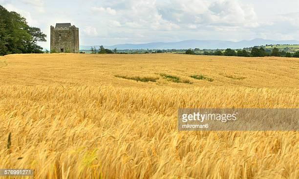 Thurles area castle, Ireland.