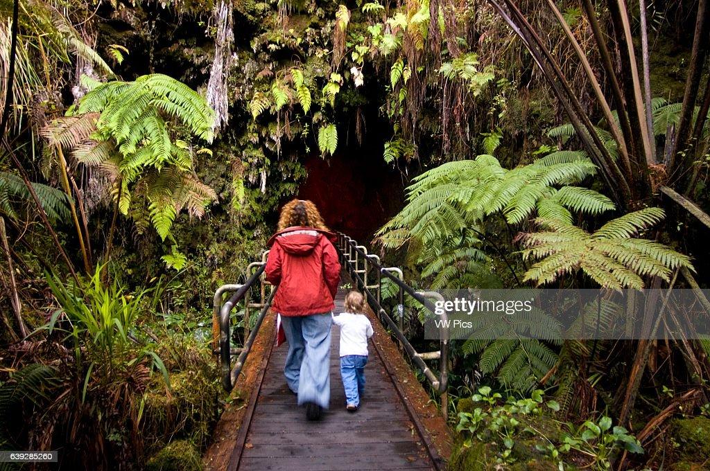 Thurston Lava Tube - Volcanoes National Park, Big Island, Hawaii ...