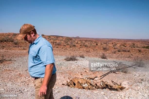 Thuru Lodge Game farm manager Burger Schoeman walks away from a pit full with dozens of animal carcasses at the Thuru Lodge Game farm near...