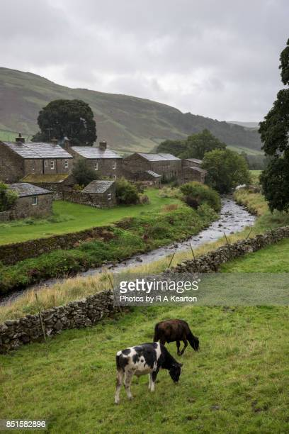 Thwaite village in the rain, Swaledale, Yorkshire Dales, England