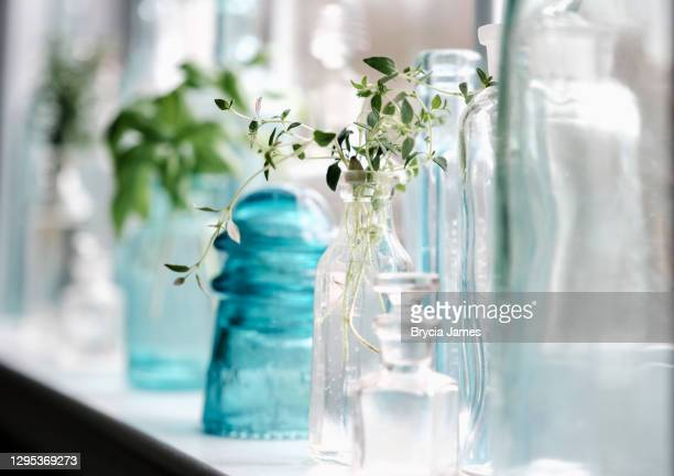 thyme in a bottle - brycia james stock pictures, royalty-free photos & images