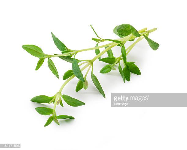 thyme - twig stock pictures, royalty-free photos & images