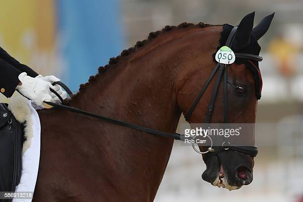 Tian Alex Hua of China riding Don Geniro competes in the Eventing Individual Dressage event during equestrian on Day 2 of the Rio 2016 Olympic Games...