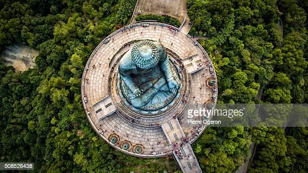 Tian Tan Buddha, Big Buddha