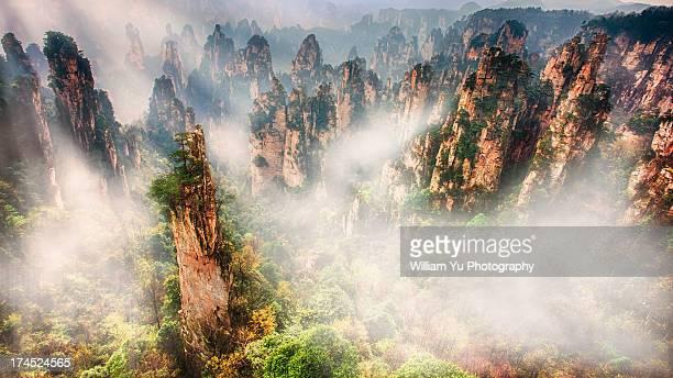 Tianzishan in the morning fog
