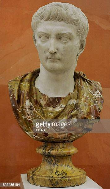 Tiberius 2nd emperor of the Roman Empire from 1437 AD JuliioClaudia Dynasty The State Hermitage Museum Saint Petersburg Russia