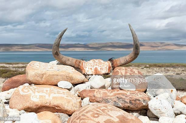 tibetan buddhism, yak horns and mani stones with tibetan script, former monastery of nyengo gompa above lake manasarovar, mapham yutsho, kailash area, ngari, trans-himalaya, himalayas, west tibet, tibet autonomous region, people's republic of china, asia - mt kailash stock pictures, royalty-free photos & images