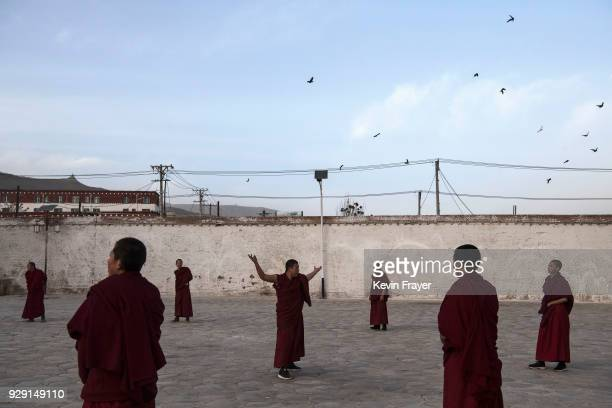 Tibetan Buddhist Monks of the Gelug or Yellow Hat school practice for a Cham dance at the Rongwo Monastery during Monlam or the Great Prayer on March...