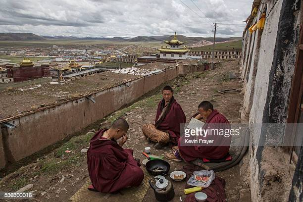 Tibetan Buddhist monks who are prohibited from harvesting cordycep fungus read prayer books on the 15th day of Saka Dawa the holiest day of the...
