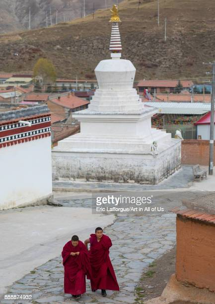Tibetan buddhist nuns passing in front of a stupa in Labrang nunnery Gansu province Labrang China on October 30 2017 in Labrang China