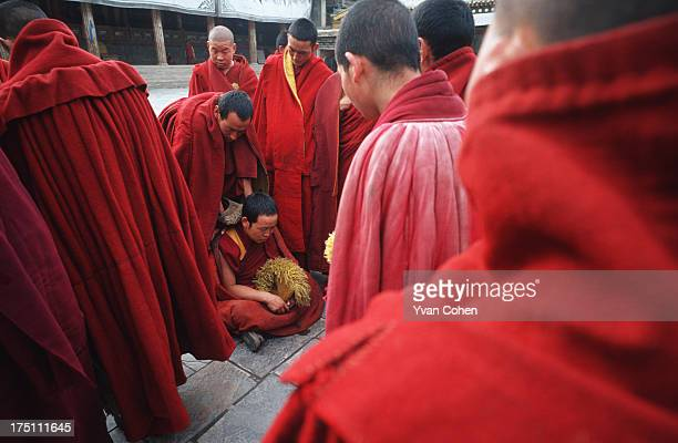 Tibetan monks chat and joke after a prayer session in the chill afternoon air at Kumbum monastery the birthplace of Je Tsongkhapa founder of the...