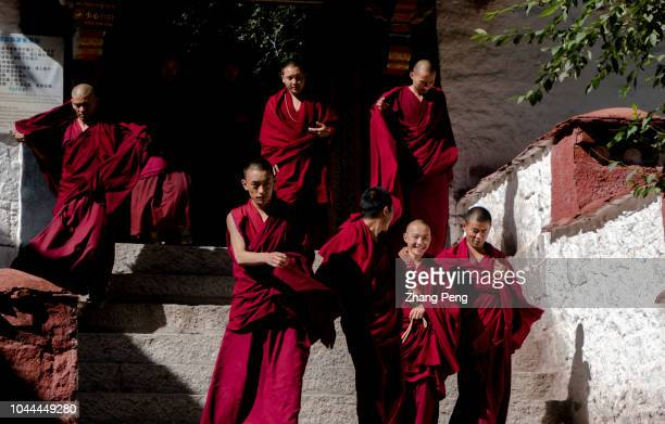 Tibetan monks walking in Sera Monastery after debating Debating is a traditional learning method in Tibetan Buddhism Young monks study Buddhist...