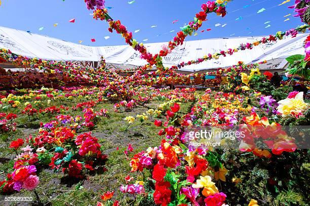 tibetan nomad celebration at buddhist flower festival. - religious celebration stock pictures, royalty-free photos & images
