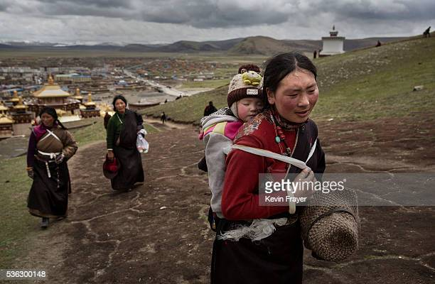 Tibetan nomad woman carries her child on the 15th day of Saka Dawa the holiest day of the Buddhist calendar when it is prohibited from harvesting on...
