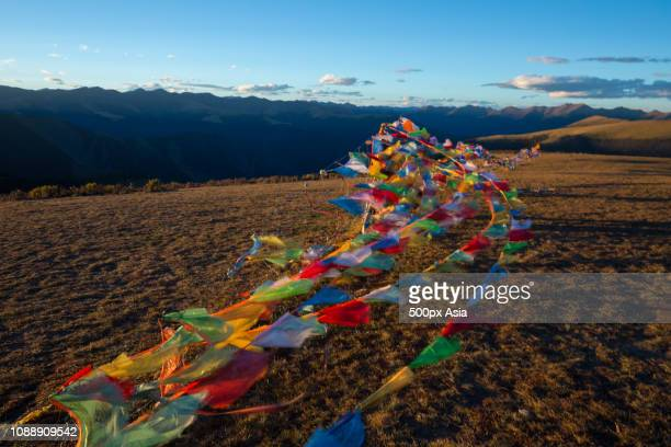 tibetan prayer flags in barren landscape, china - image stockfoto's en -beelden