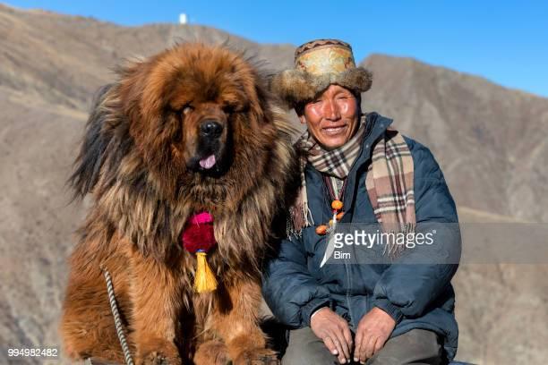tibetaanse herder met zijn hond mastiff - tibetaanse cultuur stockfoto's en -beelden