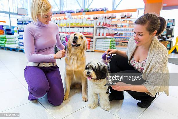 Tibetan Terrier and Golden Retriever in pet store with owners