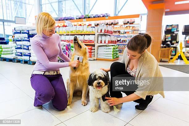 Terrier du Tibet et Golden Retriever dans magasin pour animaux de compagnie avec les propriétaires