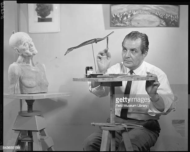 Tibor Perenyi scientific illustrator creating a model of the Tully Monster for an exhibit at the Field Museum Chicago Illinois November 11 1963