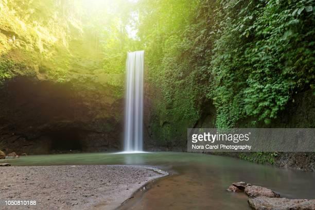 tibumana waterfall in ubud, bali. - falling water flowing water stock pictures, royalty-free photos & images