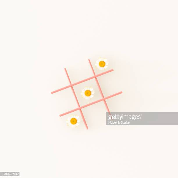 tic tac toe play with daisy blossoms