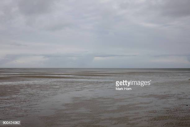 Tidal flats and sky on Terschelling, West Frisian Islands, Netherlands