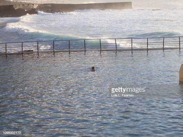 Tidal pool, Punta del Hidalgo, Tenerife
