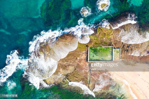 tid vatten pool, sydney, nsw - tidvattensbassäng bildbanksfoton och bilder