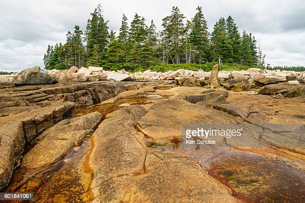 Tidal pools among granite outcrops, Acadia National Park, Maine, America, USA