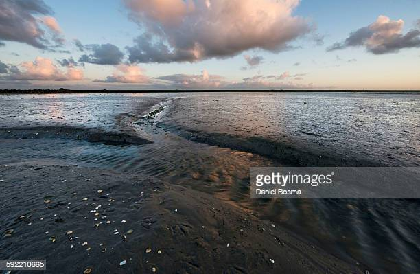 Tidal stream in muddy flats of the Waddenzee