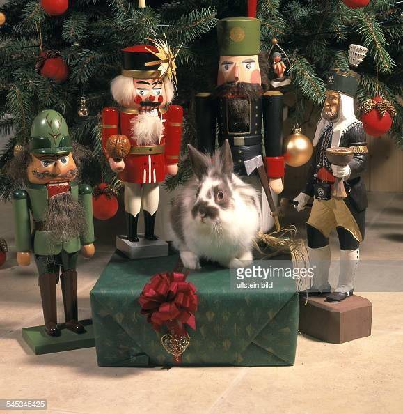Tiere Unterm Weihnachtsbaum Geschenkpaket Nussknacker Und News