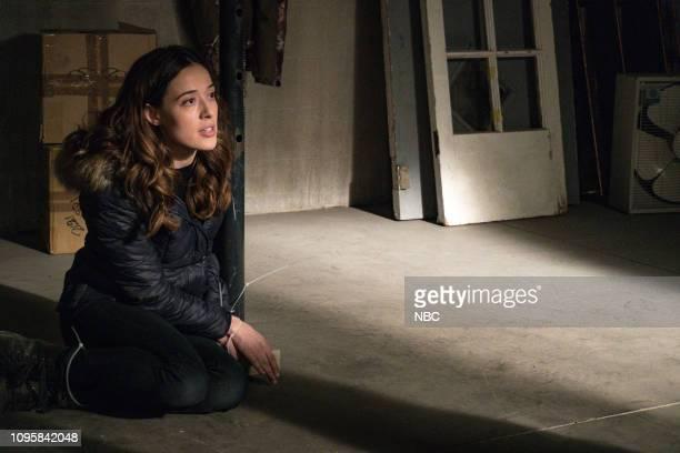 D Ties That Bind Episode 614 Pictured Marina Squerciati as Kim Burgess