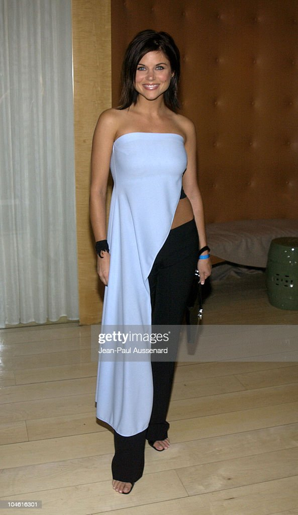 2002 Fox Summer TCA Party
