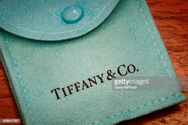 Tiffany & Co. Suede Pouch