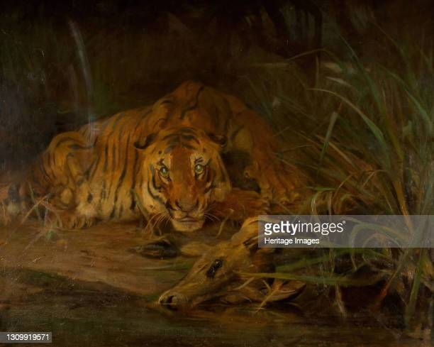 Tiger And Prey, 1931. Artist Cuthbert Edmund Swan. .