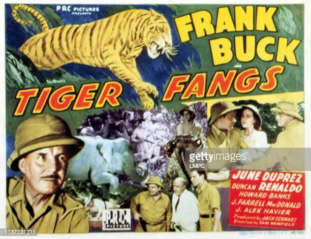 Tiger Fangs lobbycard Frank Buck J Farrell MacDonald Duncan Renaldo June Duprez 1943