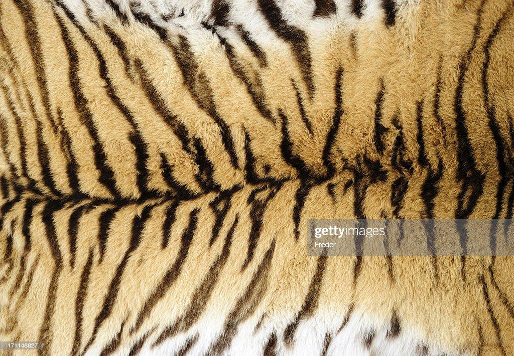 tiger fur : Stock Photo