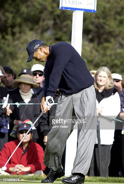 Tiger makes contact with the ball on 10 tee at the 2003 Target World Challenge benefiting the Tiger Woods Foundation